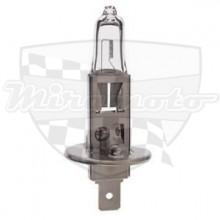 Žárovka H1 12V 55W bílá